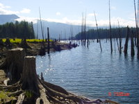 BOMB_Sq.__Horseshoe_Canoe_Route_Sept_9_2010_013.jpg